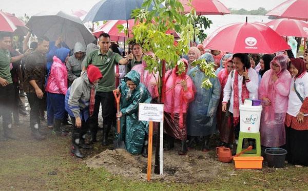 tanam i uta pohon mangrove b
