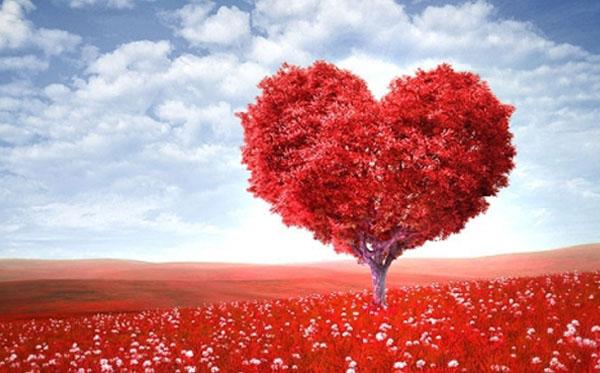 kasih dalam kristen a