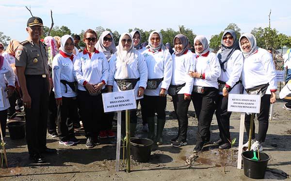 Gerakan Nasional Peduli Mangrove PD Bengkulu c