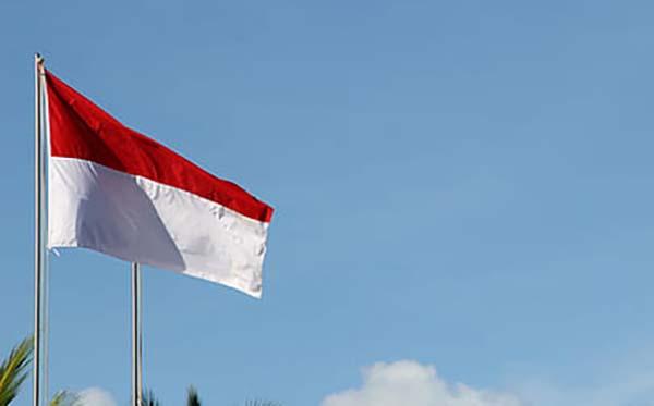 bendera 5
